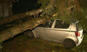 In Bleiberg (Gemeinde Irdning) stürzten durch den Sturm in der Nacht zwei Bäume auf ein Wohngebäude sowie auf einen davor geparkten Pkw. / Bild: APA/BFV LIEZEN/SCHLÜSSLMAYR