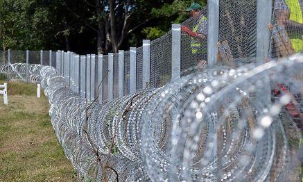 Zaun an der Grenze von Ungarn zu Serbien. / Bild: APA/AFP/CSABA SEGESVARI