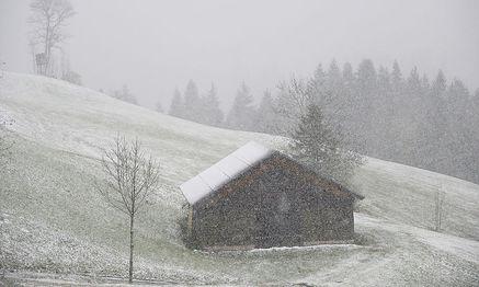 Erste Schneefälle gab es bereits am Mittwoch (Bild aus Gaissau im Bundesland Salzburg) / Bild: APA/BARBARA GINDL