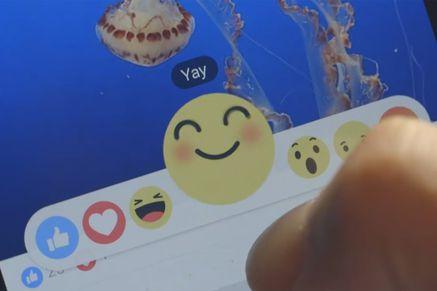 Bild: (c) Screenshot Facebook-Video