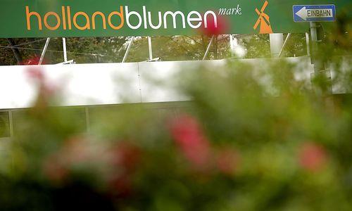 Holland blumen mark 34 von 85 standorten vor dem aus