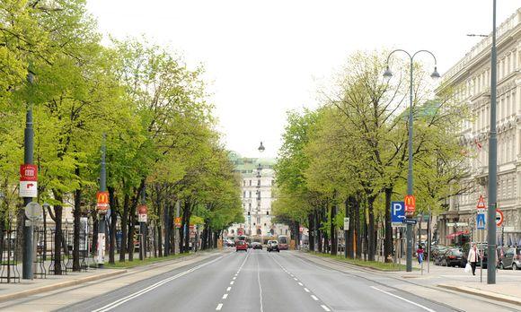 Wien partnersuche