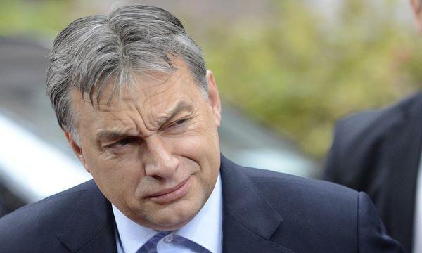 Victor Orbán / Bild: (c) AP (Geert Vanden Wijngaert)
