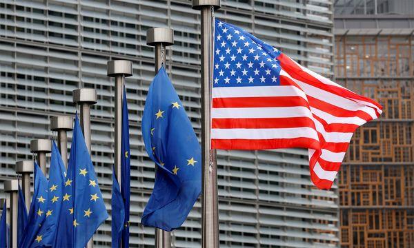 """Republikaner sind stark von Anti-EU-Thema infiziert."" / Bild: (c) Reuters (Francois Lenoir)"