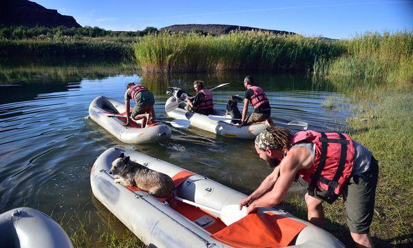 Klingt theoretisch extremer als die Praxis: Paddeln auf Namibias Grenzfluss Orange River. / Bild: Kai Althoetmar