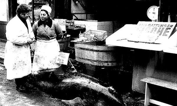 Naschmarkt im Jahr 1971 / Bild: ÖNB Bildarchiv