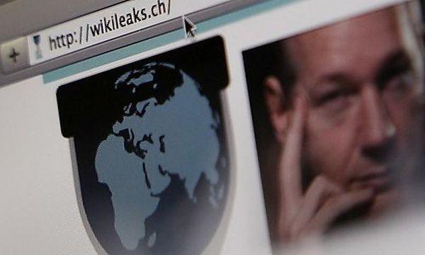 Mehrheit der Österreicher findet Wikileaks