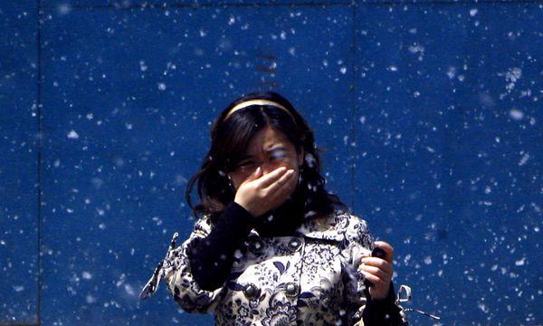 Themenbild: Allergie / Bild: Reuters