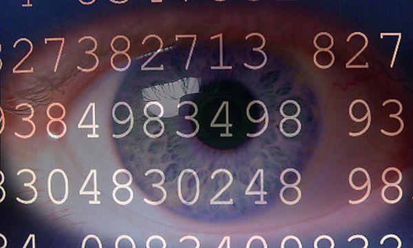 Bild: (c) bilderbox (Www.bilderbox.com)