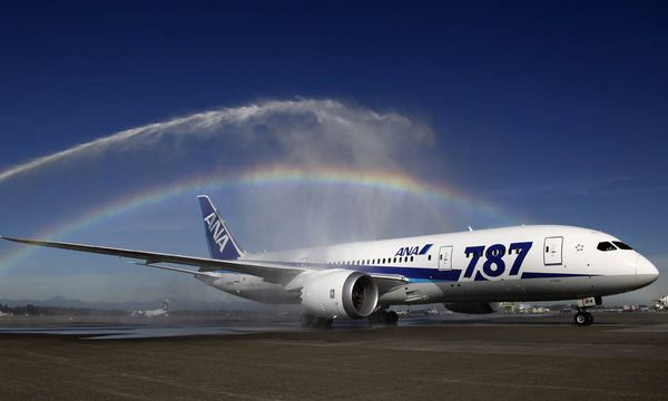 Dreamliner / Bild: (c) AP (Ted S Warren)