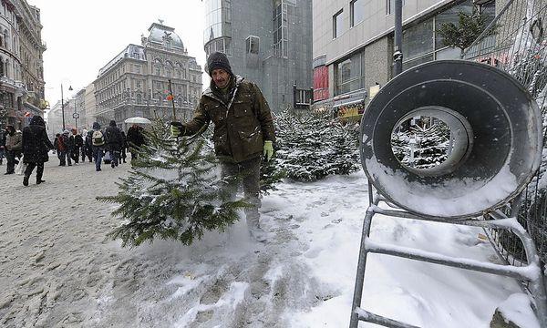 Ob es am Heiligen Abend, wie schon Mitte Dezember hier in der Wiener Innenstadt, Schnee geben wird? / Bild: (c) APA/ANDREAS PESENLEHNER