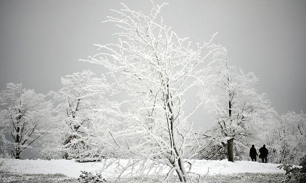 Schnee in Winterberg / Bild: dapd