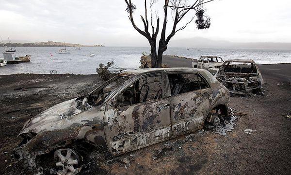 Auf der Insel Tasmanien wüten bereits zahlreiche Brände / Bild: (c) EPA (ROB BLAKERS)