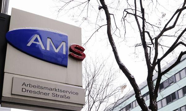 Arbeitsmarkt Winter Arbeitslose AM / Bild: (c) APA/ANDREAS PESSENLEHNER (ANDREAS PESSENLEHNER)