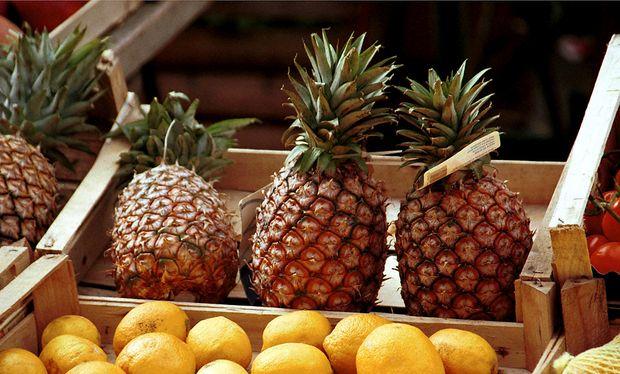 forscher z chten ananas mit kokos geschmack. Black Bedroom Furniture Sets. Home Design Ideas