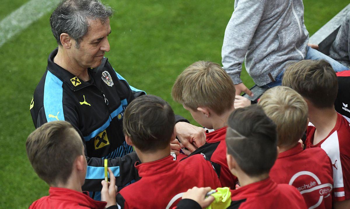 Zielscheiben Systematisch Wilson Jugend Redi-play Doppel Strick Übung Fußball Hose Flach Weitere Sportarten